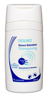 Douxo Maintenance shampoo 200 ml